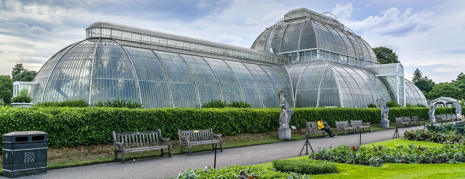 Orchid You Not – you have to get to Kew Gardens!