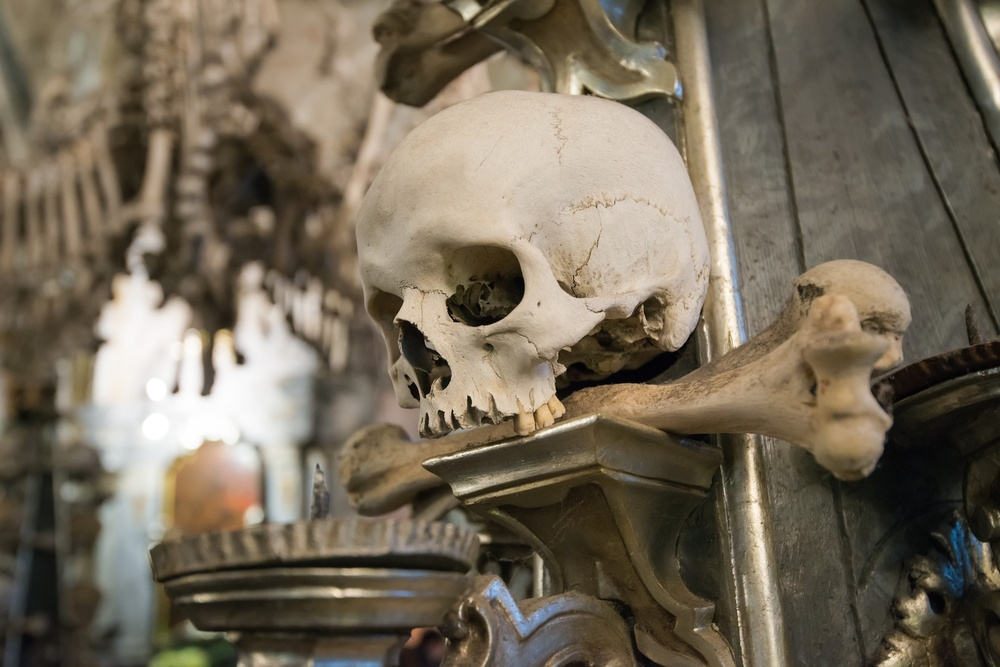 A skull on the wall at Sedlec Ossuary