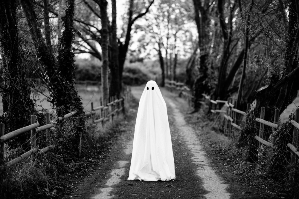 A ghost stands on a forest pathway