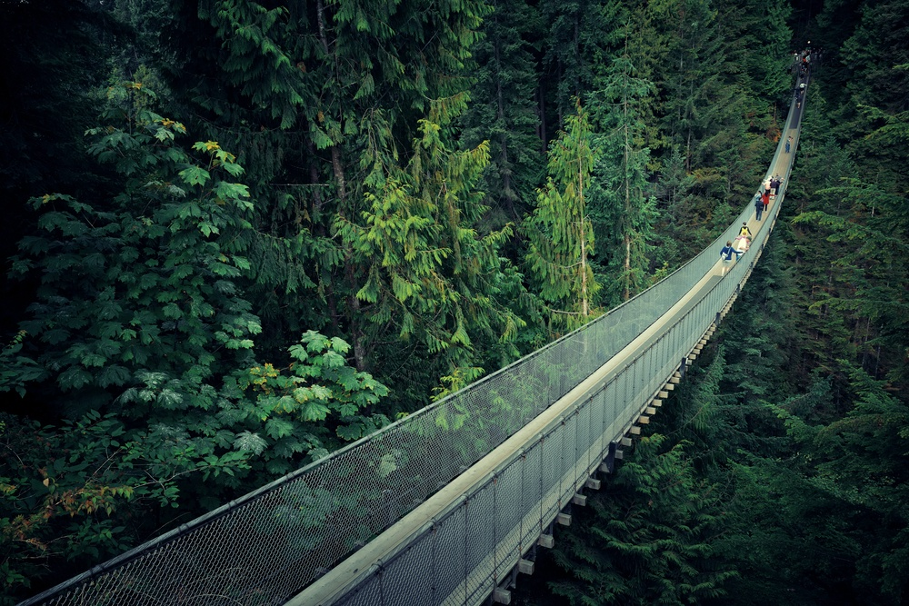 Capilano Suspension Bridge Park, a great day trip from Vancouver.