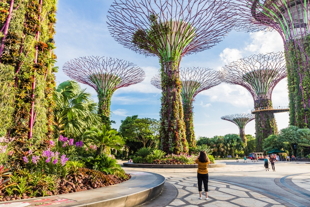 Supertree Grove in Singapore's Gardens by the Bay, an emblem of responsible tourism.