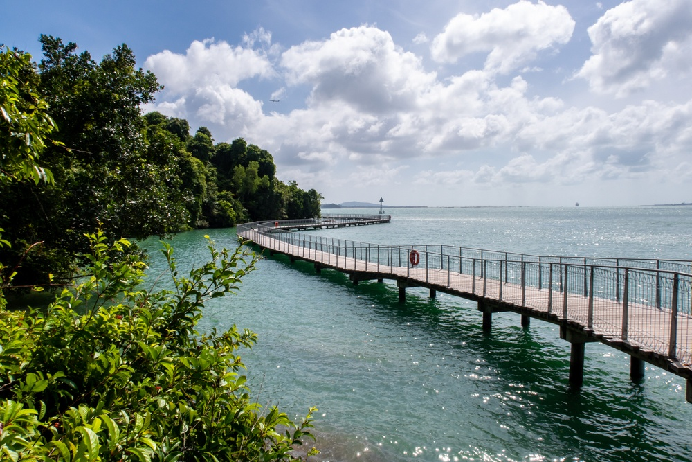 Chek Jawa Wetlands is a nature lover's paradise and the perfect getaway from Singapore city