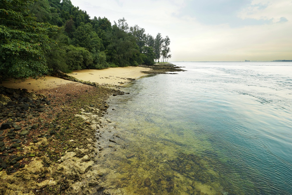 A snorkeling adventure in Sisters island is one of the lesser-known day trips from Singapore you can take