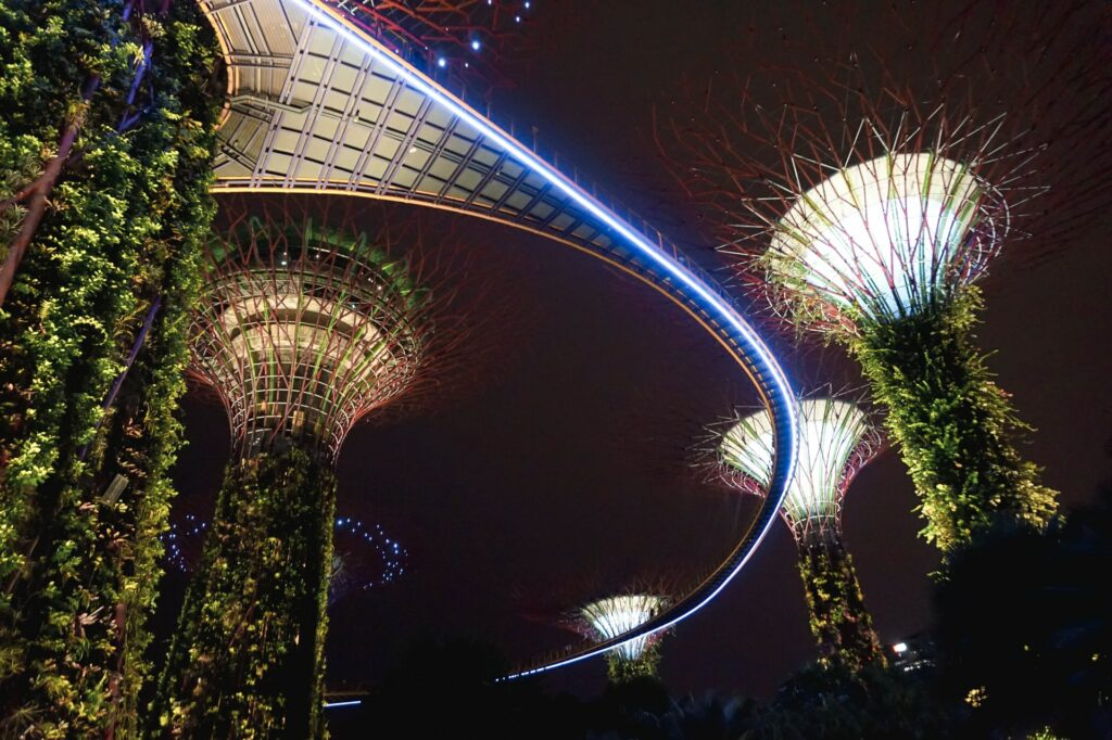 The Supertree Grove at Gardens by the Bay