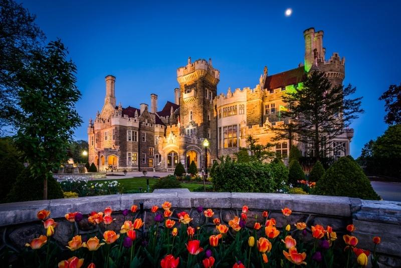 Tulips and Casa Loma at night, in Midtown Toronto, Ontario.