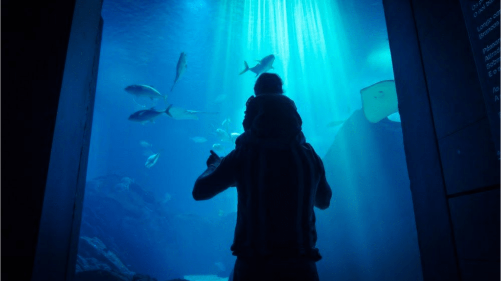 genitore con bambino sulle spalle guardando la vita marina nell'acquario Oceanario