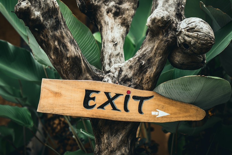 Exit sign on a tree.